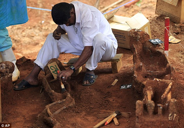 Voice of the dead: A Sri Lankan worker unearths skeletons at a mass grave found in a hospital construction site. The president has announced an investigation into the site