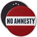 no_amnesty_pins-r873b9ba0a8284802a5220a61c12a3424_x7j18_8byvr_512