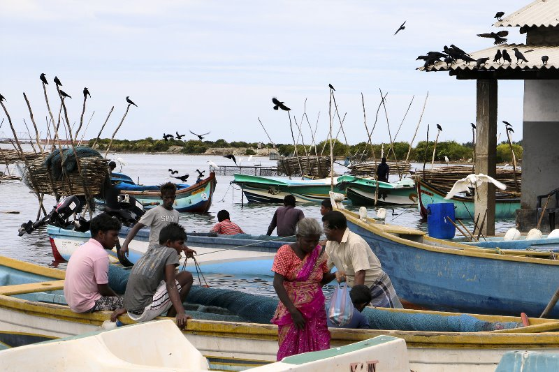 Mannar, in northern Sri Lanka, is a fishing village where ethnic Tamils live. The country's long civil war ended in 2009, but many in the village say there will not be reconciliation until there's an accounting of the thousands of Tamils who disappeared during the fighting. Julie McCarthy/NPR