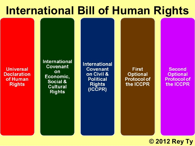 2012-rey-ty-international-human-rights-law-for-beginners-dekalb-il-northern-illinois-university-5-638