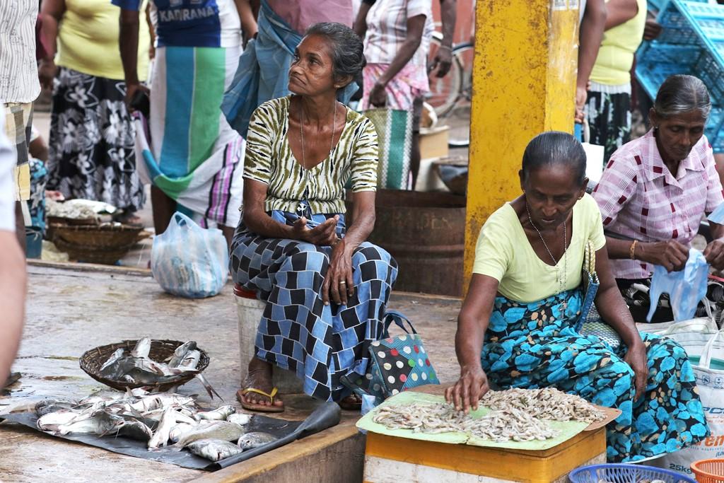 Selling fish in Negambo, sri Lanka ©s.deshapriya