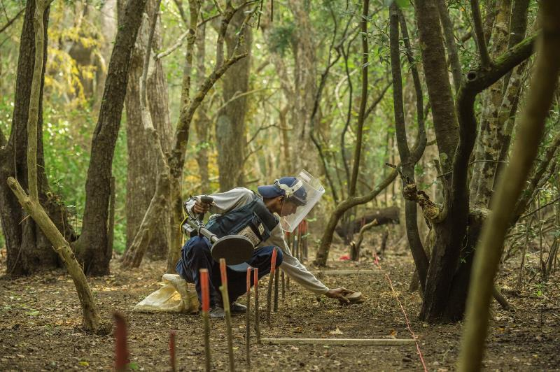 A worker with HALO Trust, a British nonprofit, removes land mines in Jeyapuram, once a Tamil Tigers stronghold south of the Jaffna Peninsula. The organization hires mostly Tamils—about half war widows—and has removed more than 212,000 mines. The government is aiming to clear most remaining mines by 2020.