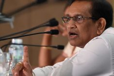 Sri Lanka calls monks who attacked Rohingya 'animals'