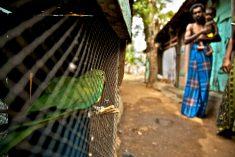 Sri Lanka: Time to Set-up a TRC? – Mark Salter