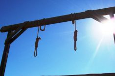 The European Union & the like minded countries call on Sri Lanka to maintain its moratorium on the death penalty.
