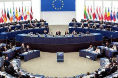EU parliament votes to grant GSP+ to Sri Lanka; Final division in two weeks.