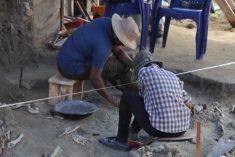 Sri Lanka mass grave: Dozens of skeletons found in Mannar