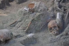 Sri Lanka mass graves: 230 skeletons found at country's largest site