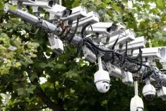 Welcome To The Surveillance State: China's AI Cameras See All