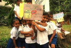 SRI LANKA: Dengue Fever Epidemic In Sri Lanka Vs. State Responsibility