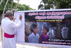 Tamil Political Prisoners: Suggestions for a Comprehensive Legal Policy Approach