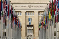 INGOs  write to Rights commissioner: Need for time-bound plan for  implementation of Sri Lanka's commitments to the HRC