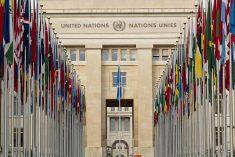 Stop hateful attacks against religious minorities in Sri Lanka : UN