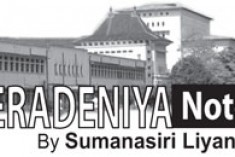 Is the Ministry of Higher Education violating the University Act?