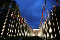 Report: UN's Participation is Necessary in the Implementation of TJ Mechanisms of Sri-Lanka – NECC