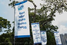 Sri Lanka: Interim report for constitutional reform: Principals of devolution