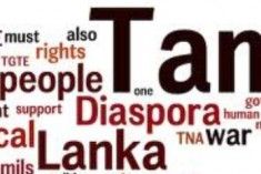Diaspora Festival in Colombo Postponed