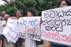Politically speaking, 'a plague on both your houses' – Kishali Pinto Jayawardene