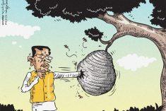 Why didn't they tell Sirisena that? – Dr Nihal Jayawickrama