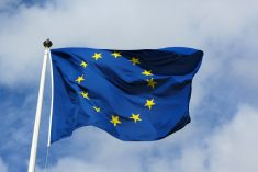 Allow Parliament to demonstrate its confidence by voting immediately when reconvened, says EU