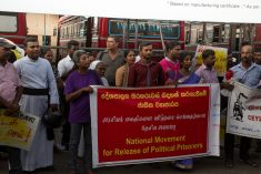 Release  Tamil political prisoners without any further delay – Sampanthan tells Sirisena
