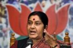 Discussed 13th Amendment, says Sushma
