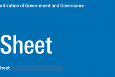 Sri Lanka Brief Fact Sheet:  Militarisation and Securitization of Government and Governance in Sri Lanka.