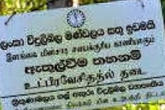 800 Tamil families displaced in Sampur lands being acquired for  company owned by  Rajapaksa clan