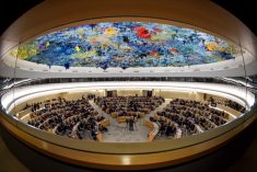 HRC 40: Conclusions and Recommendations of the UN Rights Commissioner's report on Sri Lanka