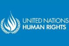 Adopt a victim-centred approach in order to guarantee full implementation of the right to an effective remedy for human rights violations – Open letter to UN