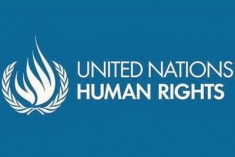 "Key UN expert group urged world governments to allow human rights organisations and individuals to engage with the UN ""without fear of intimidation or reprisals"""