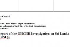 Sri Lanka: Stop foreign funding to NGOs,rescind the OISL Report &  resolution 30/1 – Pro Rajapaksa  professionals