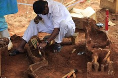 Murdered then tossed into a mass grave: Sri Lanka unearths 150 decades-old skeletons and promises to uncover the truth