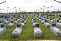 Sri Lanka LTTE's 'Great Heroes Day': No Peace in Rest – Ruki Fenando & Amalini