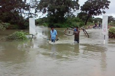 Struggling To Survive: Families Hit By Floods In Kilinochchi