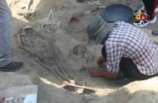 Campaign in Mannar to protect Human remains of Mannar Mass Grave