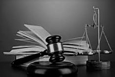 There is at present, no constitutionally established Court of Appeal – J.C. Weliamuna