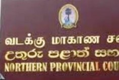 NPC Opposes Govt. Move to Appoint District Coordinator to North DCCs