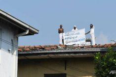 Sri Lanka prisoners demand freedom after Swede's killer pardoned