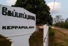 Sri Lanka: Keppapulavu- Land Struggle Reaches Boiling Point after 700 days of protest – Ruki Fernando