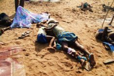 Civil Society Collective calls on govt to investigate war crimes