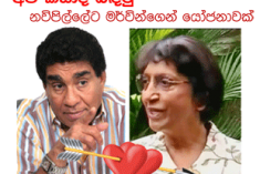 Married Sri Lankan Minister says he is ready to marry HR High Commissioner Navi Pillay and take her around!