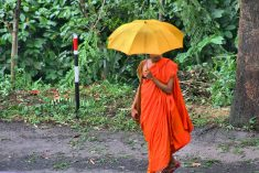 "Sri Lanka: A Buddhist Monastery prevents non-Buddhists from cooking meals for Monks as they cause ""Infertility"""
