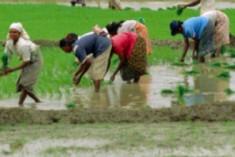 Rajapaksa Can No Longer Count On Rural Sinhala Vote Bank