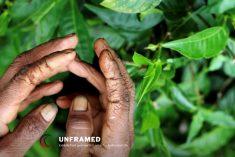 "FMM condemns disruption of ""Unframed"" photo exhibition at Peradeniya University"