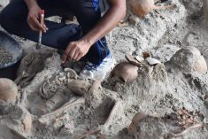 Skeletons of 21 children found in mass grave in Sri Lanka with 'signs of torture'