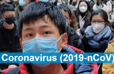 Q&A on coronaviruses & safe practices for general public – WHO