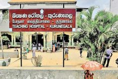 Sterilisation scare: Mob 'justice' in Kurunegala?